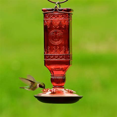 pet hummingbird for pet 174 square antique bottle glass hummingbird 3358
