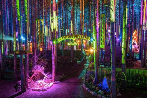 electric forest    sale december