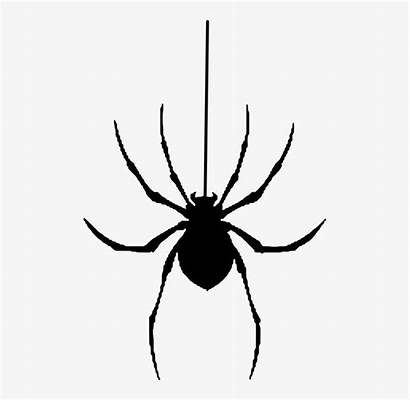 Spider Halloween Clipart Silhouette Spooky Spiders Insect