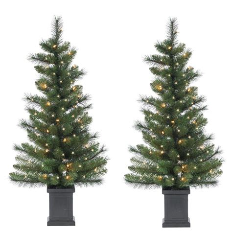 home depot christmas tree pricereal sterling 3 5 ft potted mixed needle sycamore spruce