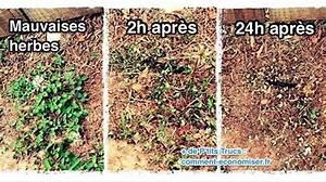 Desherbant Mauvaise Herbe : 5 d sherbants faits maison que toutes les mauvaises herbes ~ Premium-room.com Idées de Décoration