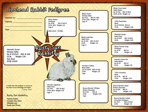 rabbit pedigrees show rabbit information