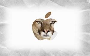 Mountain Lion Wallpaper HD - WallpaperSafari