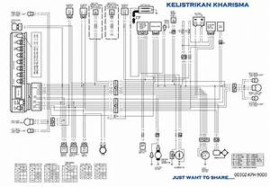 Wiring Diagram Tiger Revo