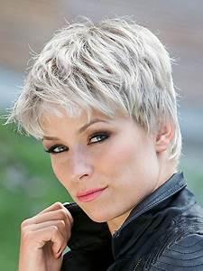 Coupe Homme Cheveux Gris : coupe cheveux courts gris ~ Melissatoandfro.com Idées de Décoration