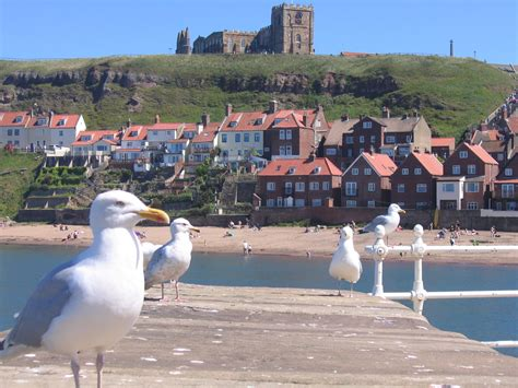 Hotels, Cottages, B&Bs & Glamping in Whitby & the North ...