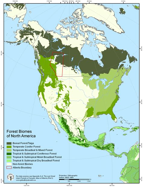 Forest Biomes Of North America [2445 × 3195] Mapporn
