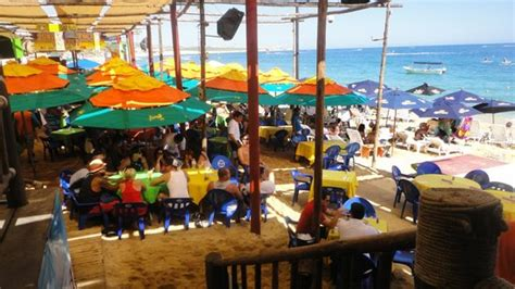 Mango Deck Cabo by Mango Deck Picture Of Mango Deck Restaurant Bar