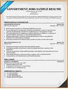 Cover Letter For Finance Job No Experience Acupuncturist Examples Of A Cover Letter With No Experience Cover Cover Letter Tips For First Time Job Seekers Martha Foster Cover Letter And Resume