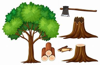 Tree Stump Trunk Clipart Deforestation Drawing Clip