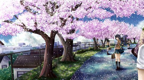 cherry blossoms ilolamai seifukujpg