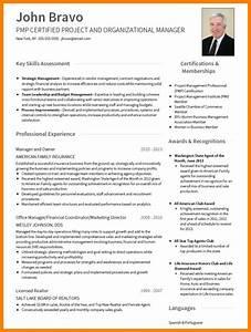5  Cv Professional Format