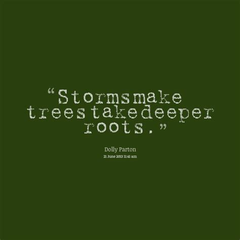 roots tree  life quotes quotesgram