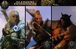 Aldmeri Dominion Faction Guide For Elder Scrolls Online