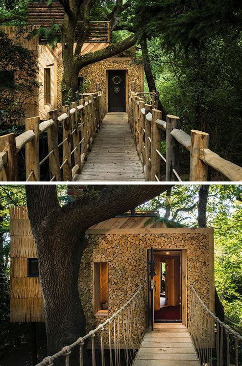 amazing treehouse hotel  designed  adults