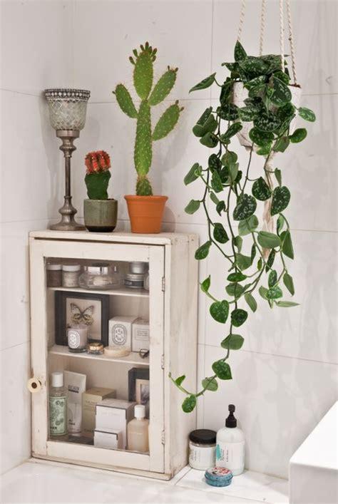 planten in badkamer planten in de badkamer is helemaal hip wooninspiratie