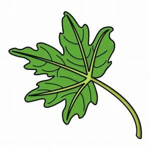 SMART Exchange - USA - Cartoon Plants