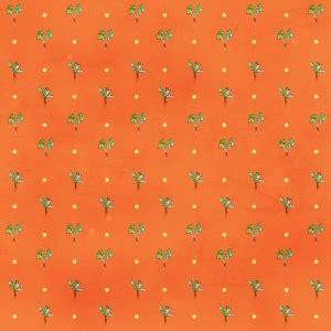 carrot paper digital scrapbooking   orange