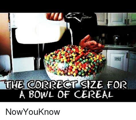 Cereal Bowl Meme - 25 best memes about bowls of cereal bowls of cereal memes