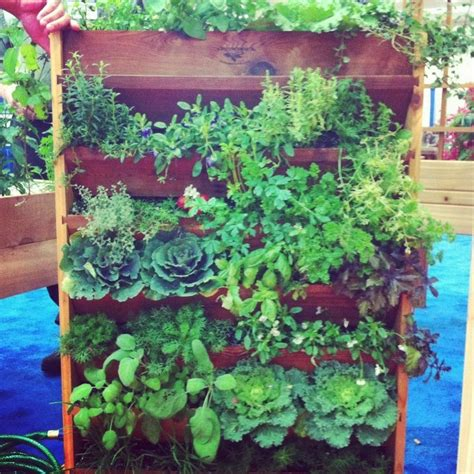 Vertical Vegetable Garden Design by 20 Vertical Vegetable Garden Ideas Home Design Garden
