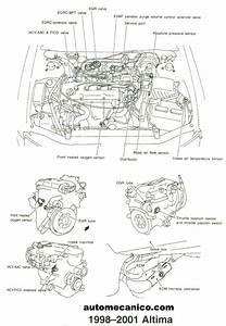 Nissan Altima Frontier Maxima Pathfinder Sensores Y