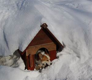 tips for heating a dog house during the winter With how to insulate a dog house