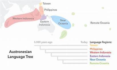 Austronesian 23andme Ancestry Language Tree