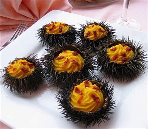 oursin cuisine recette manureva d 39 oursins 750g