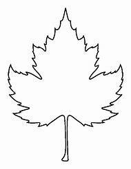 Best leaf template ideas and images on bing find what youll love leaf outline printable maxwellsz