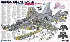 F-15 Silent Eagle Cutaway