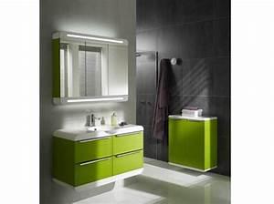Deco Salle De Bain Gris : tout pour mettre en place une d co salle de bain gris et vert ~ Farleysfitness.com Idées de Décoration