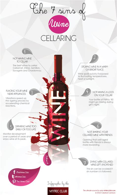 The 7 Sins Of Wine Cellaring Visually