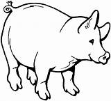 Pig Coloring Pages Funny Animals Craft Pigs Printable Colouring Boar Animal Farm Clipart Wild Creature Children Pot sketch template