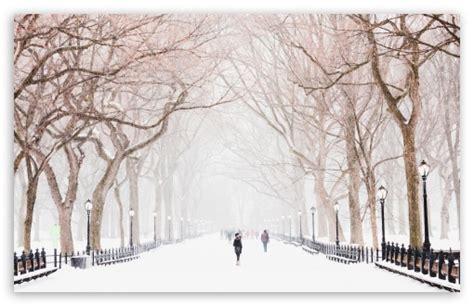 Central Park Winter Iphone Wallpaper by Winter Central Park New York City 4k Hd Desktop