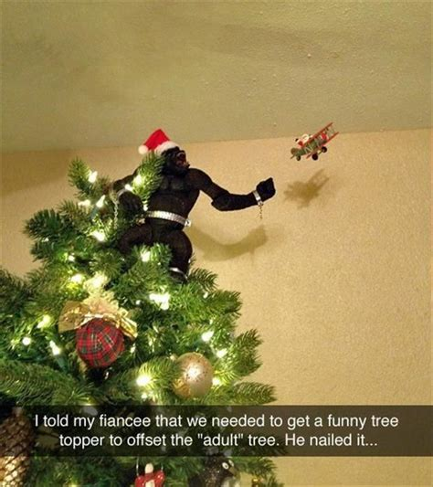 funny pictures   day  pics