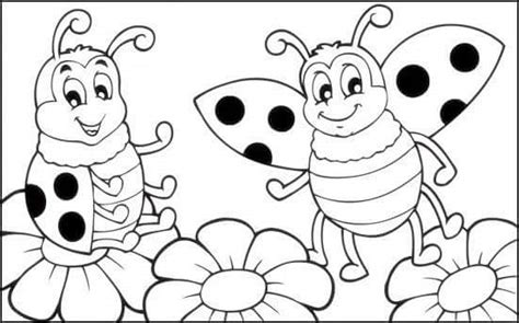 Ladybug Coloring Page (2) « Funnycrafts