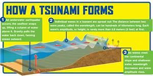Tsunami Safety On Emaze