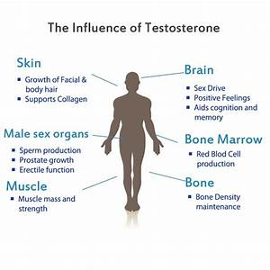 What Happens When Your Testosterone Levels Drop