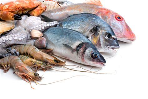 sardine cuisine entretenir capital vitalité par une bonne nutrition