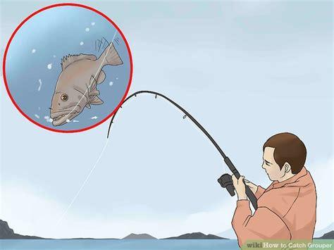 grouper catch wikihow bait bottom