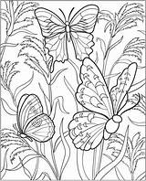 Coloring Pages Gardening Colouring Vegetable Garden Flower Sheets Gardens Adults Flowers Butterfly Insect Printable Adult Hard Vegetables Read sketch template