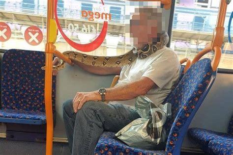 Bus-rider wears live snake instead of coronavirus mask