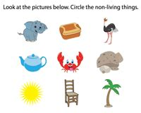 recognize   living   images science