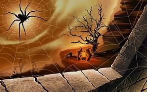 Image Gallery halloween spider wallpaper