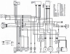 Wiring Schematics For 86 125 Fourtrax