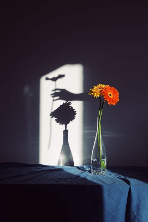 Through the Lens of Photographer Delfi Carmona - Fubiz Media