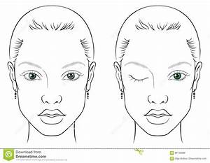 Face chart woman stock vector. Illustration of chart ...