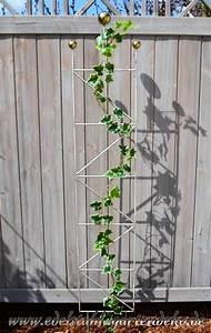 Rankhilfe Rosen Freistehend : rankgitter mia aus edelstahl f r prachtvolle pflanzen im garten ~ Orissabook.com Haus und Dekorationen