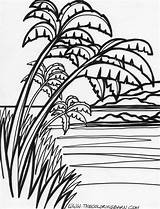 Tree Palm Coloring Pages Island Drawing Jungle Scratchboard Colouring Beach Printable Landscape Adult Tattoo Puppy Glass Stained Sheets Trees Projects sketch template