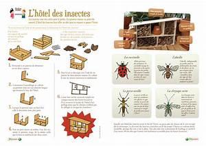 Fabriquer Un Hotel A Insecte : h tel insectes ~ Melissatoandfro.com Idées de Décoration